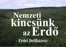 200. adás – Nemzeti kincsünk az Erdő – Erdei Delikátesz – 2018.02.03-i adás