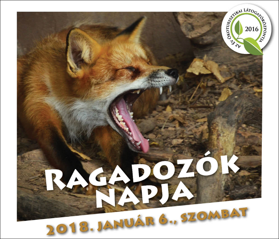 Ragadozók napja a Budakeszi Vadasparkban – 2017.01.04.