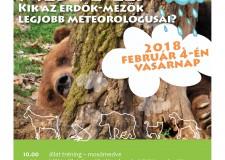 Medve-les a Budakeszi Vadasparkban – 2018.02.01.