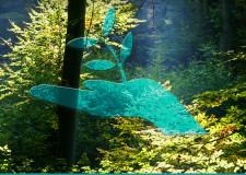 Az erdők szerepe a klímaváltozás hatásainak csökkentésében – Örökerdő