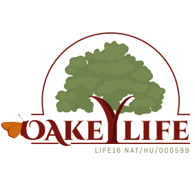 oakeylife_logo
