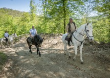 Életképek – Lovas túrák a Pilisben – Átadták a Pilis Ride  úthálózatot – 2018.04.25.