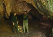 Reviczkyvel az Erdőben – Beharangozó – Zöld Világ – 2018.05.18-i adás