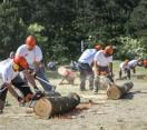 XVII. STIHL Országos Fakitermelő Versenysorozat Pilisszentiváni Regionális Elődöntője