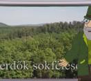 Erdő Ernő Bácsi meséi – Többféle erdő létezik?