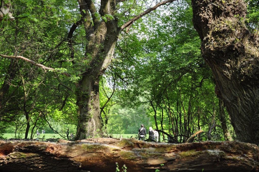 BOR, HALÁSZLÉ, GEMENC  – Az augusztus 20-i hosszú hétvégén különleges programokkal várja az ünneplőket a gemenci  erdőgazdaság