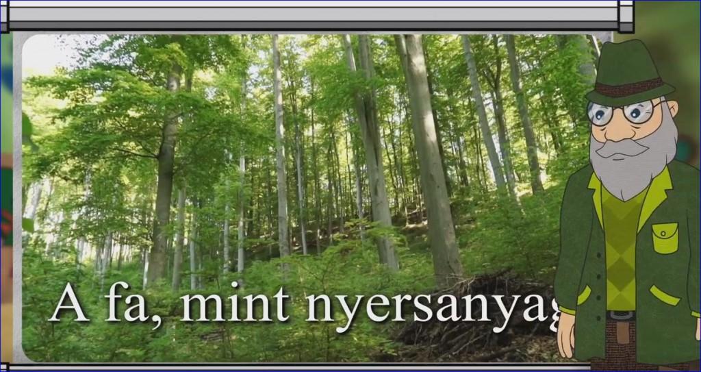 Erdő Ernő Bácsi meséi – Miért vágják ki a fákat?