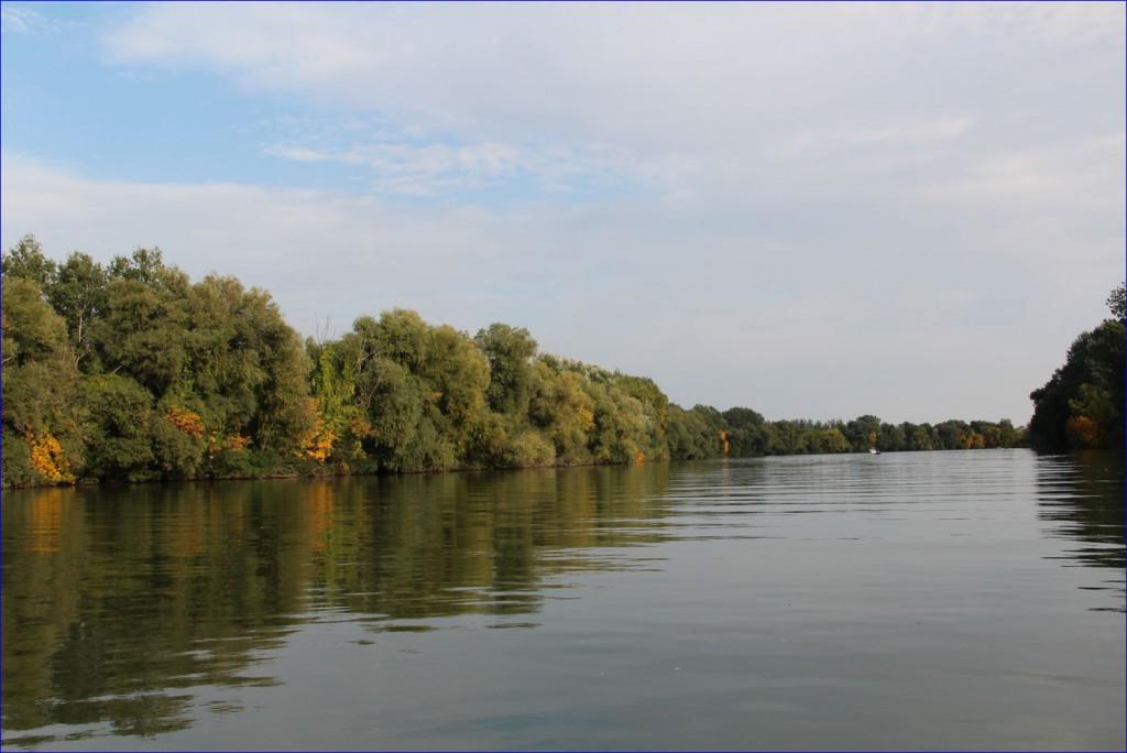 2019-ben sem emelkedik a Tisza-tavi horgászjegyek ára