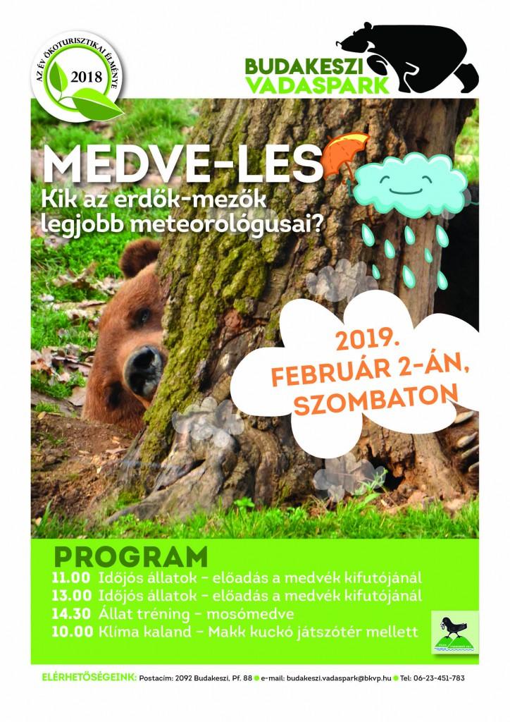 Medve-les a Budakeszi Vadasparkban