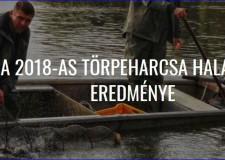A 2018-as törpeharcsa halászat eredménye a Tisza-tavon