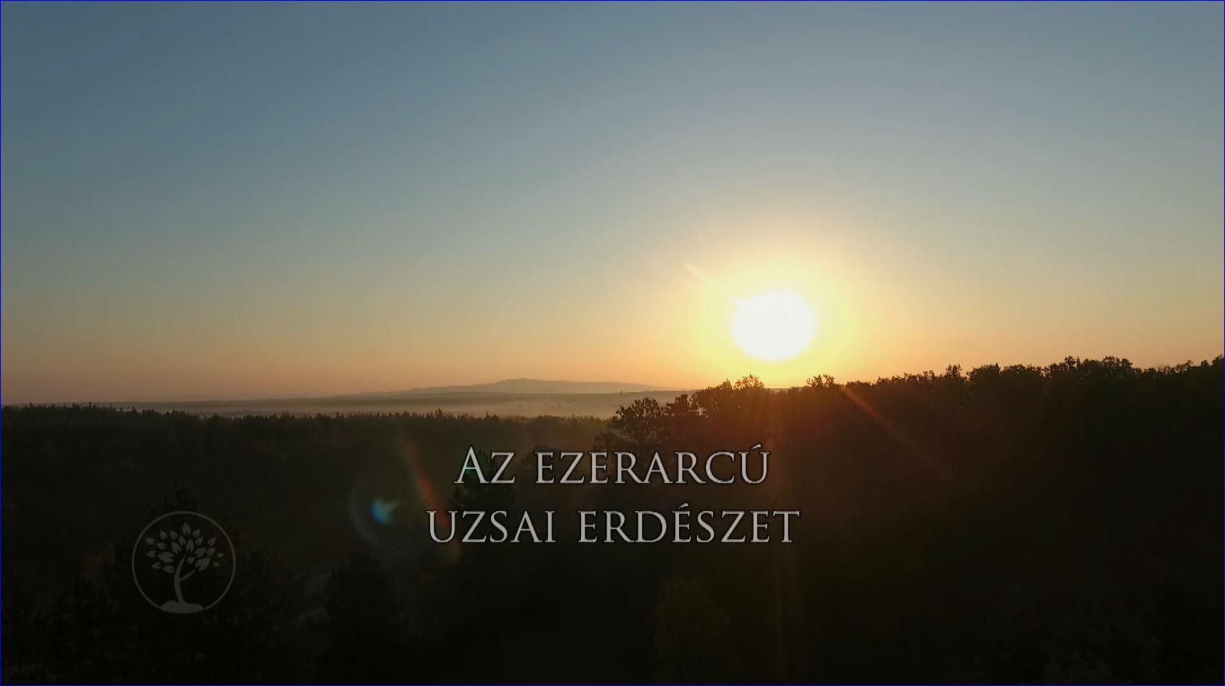 uzsai-1