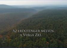 Ajánló – Reviczkyvel az Erdőben – Az erdőtenger mélyén, a VERGA Zrt. – 2019.02.03 vasárnap 12:30 óra – ECHO-TV