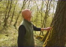 Újra nézhető! – MTVA M5 csatornán, március 27-én szerdán 11:40 órakor – Reviczkyvel az Erdőben – Buják, a hagyományok földje
