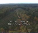 Két epizód egy napon! – Reviczkyvel az Erdőben – 2019.03.20 szerda – ECHO-TV és MTVA M5