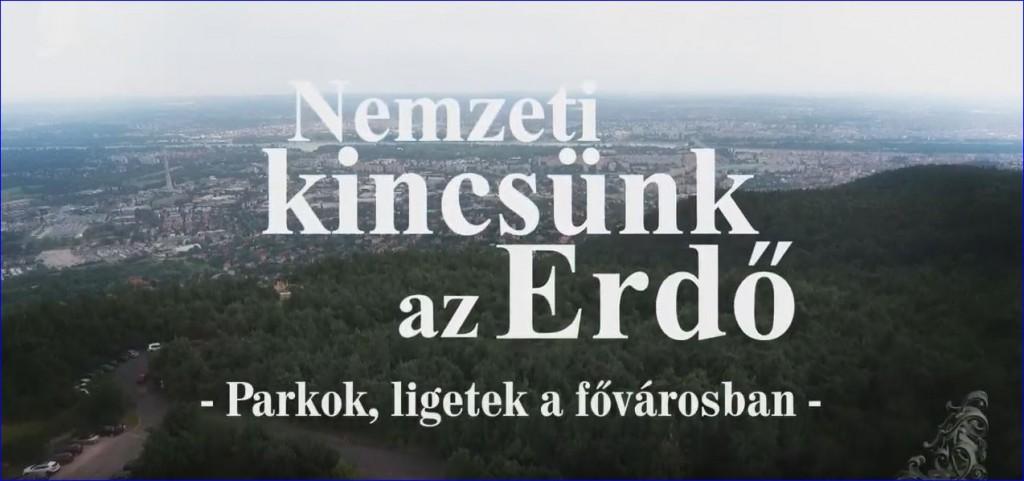 nke-parkok