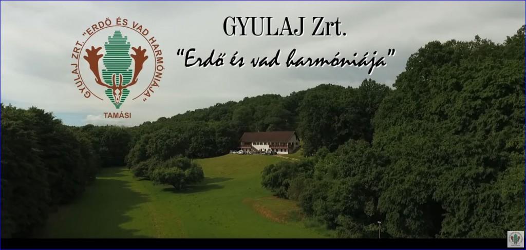 """""""Erdő és vad harmóniája"""" – Elkészült a Gyulaj Erdészeti és Vadászati Zrt. image filmje"""