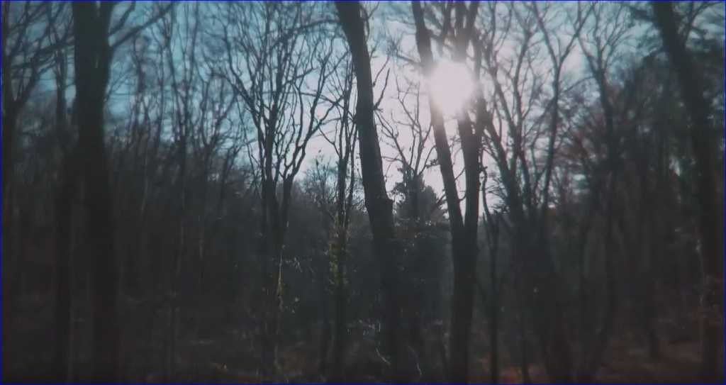 Dupla epizóddal indul! – Reviczkyvel az Erdőben I. évad 12 epizódja a HÍR TV csatornán 2019.04.09-én, kedden 13:05 órakor – 1/12.  Barangolások a téli Mecsekben –  2/12.  Somogy zöld Szíve, Kaszó