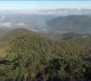Újra nézhető! – MTVA M5 csatornán, április 3-án szerdán 11:40 órakor – Reviczkyvel az Erdőben – A főváros zöld tüdeje: a Pilis