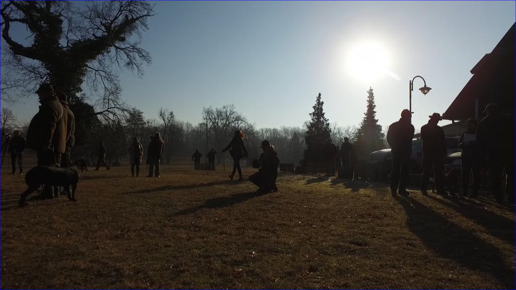 Vadász, erdész műsorokkal a HÍR TV-ben – 2019. április közepétől!