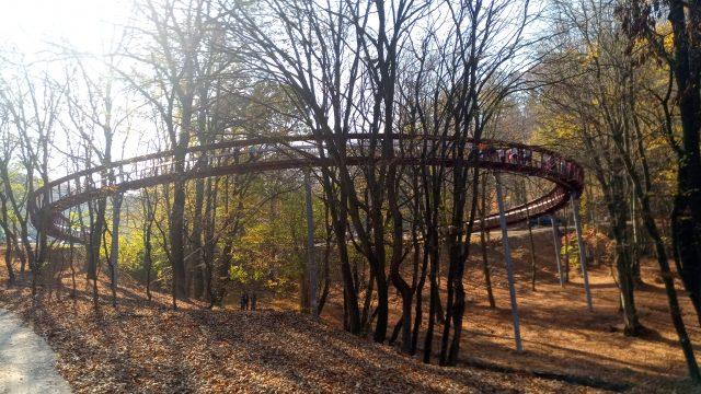 A Gerecsében, a Vöröshíd-lombkorona ösvénynél forgatott a Reviczkyvel az Erdőben stábja