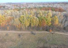 M5 csatorna – Oakeylife projekt a Peszéri-erdőben – 4. adás – 2019.12.14.