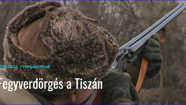 Tisza-tó – A kárókatona-gyérítés újabb eredményei