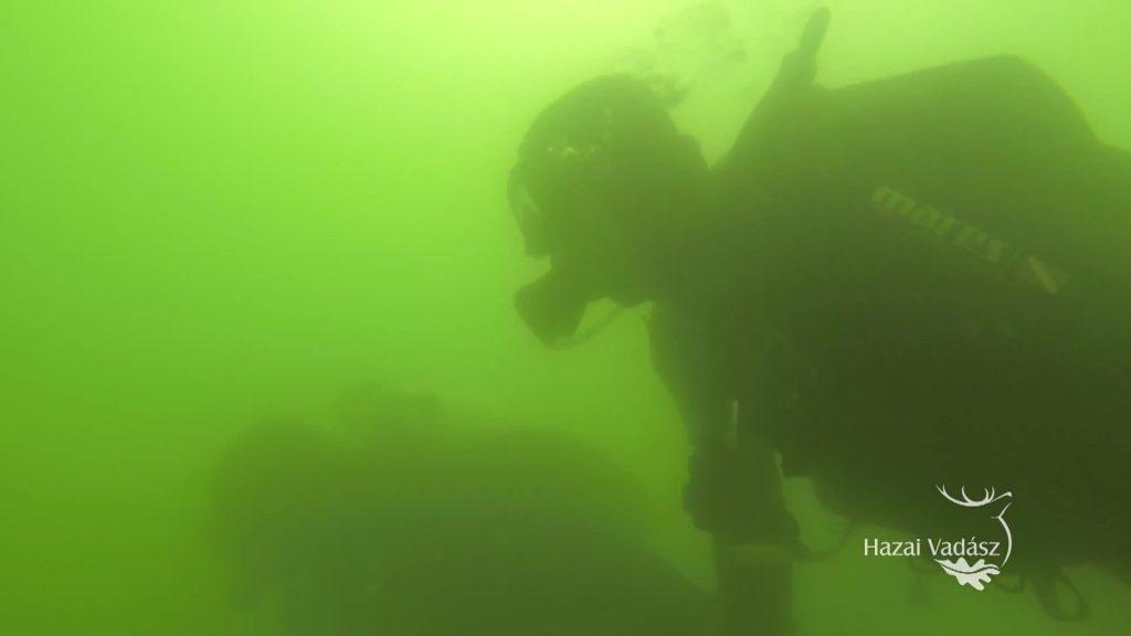 Legnézettebb filmjeink 2019-ben – Meglepetés a mélyben! – Fenyves-tó – Víz alatti fenyves