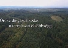 M5 TV – Az erdő természetessége – 2020/15. adás – 2020.05.09.