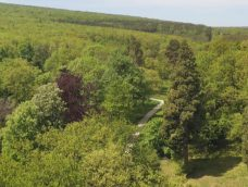 M5 TV – Nyitnak az erdők a természetjárók előtt – 2020/18. adás – 2020.05.30.