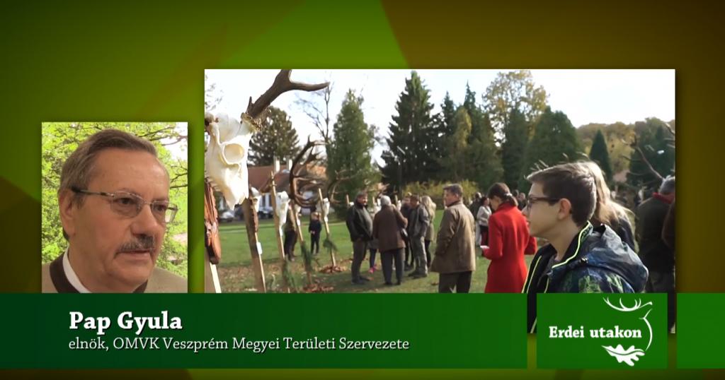 Veszprém megyei programkínálat: ha újra felpezsdül az élet! – Előzetes e heti műsorunkból: 05.09 szombat 12:50 – M5 TV