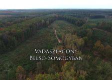 Reviczkyvel az Erdőben – II. évad – 7/12. epizód – Vadászpagony Belső Somogyban