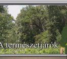 M5 TV – Erdő Ernő bácsi meséi – Kik azok a természetjárók? – 2020/27. adás – 2020.08.01.