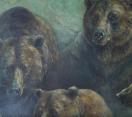Önkéntesen a Kárpát-medencében és azon is túl… – 5 Medve – Mentőakció – II. rész – 2020 – 4/11