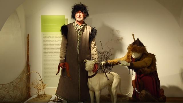 Reviczkyvel az Erdőben – Elindult a IV. évad forgatása!