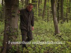 M5 TV – Nemzeti Kincsünk az Erdő – Fenntartható erdőgazdálkodás – 2021/30. adás – 2021.07.24.