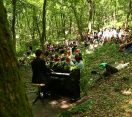 M5 TV – Madárdal mellé – zongoraszó az erdőben – 2021/30. adás – 2021.07.24.